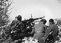 Partisans fighting for Trieste and Primorje region, 1945