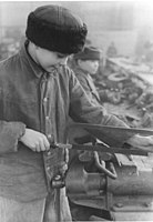 Forced labour under German rule during World War II
