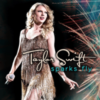 Sparks Fly (song)