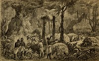 French explorer Paul Du Chaillu confirmed the existence of Pygmy peoples of central Africa