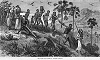 Arab slave traders and their captives along the Ruvuma River in Mozambique along the Swahili coast.
