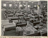 Racially segregated Negro section of keypunch operators at the US Census Bureau