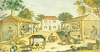 Slaves processing tobacco in 17th-century Virginia, illustration from 1670