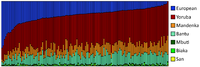 Genetic clustering of 128 African Americans, by Zakharaia et al. (2009). Each vertical bar represents an individual.