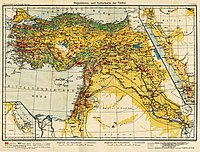 Middle East Map, 1916