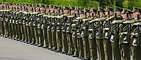 Soldiers of the Irish Army forming a guard of honour for a visiting dignitary
