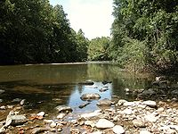 Typical freshwater river above the tidal zone. The Patapsco River includes the famous Thomas Viaduct and is part of the Patapsco Valley State Park. Later, the river forms Baltimore's Inner Harbor as it empties into the Chesapeake Bay.