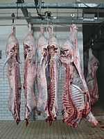 Sides of beef in a slaughterhouse
