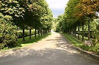 The lined drive to Elton John's home in Woodside in Old Windsor, Berkshire