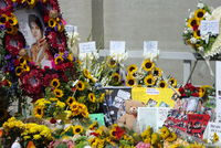 Fan tributes at Jackson's tomb on the first anniversary of his death