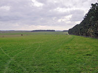 The cursus viewed from its eastern end. The gap in the trees on the horizon marks its western end.