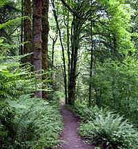 Forest Park is the largest wilderness park in the United States that is within city limits