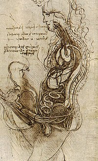"""""""Coition of a Hemisected Man and Woman"""" (c. 1492), an interpretation of what happens inside the body during coitus, by Leonardo da Vinci"""