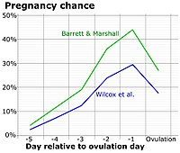 Chance of fertilization by menstrual cycle day relative to ovulation