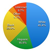 Judicial aspects of race in the United States