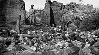 Russian soldiers uncover the evidence of a massacre in the former Armenian village of Sheykhalan (in Muş), 1916