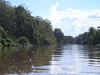 Kapuas River in Indonesia; at 1000 km in length, it is the longest river in Borneo.