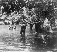 Queen's Own Highlanders 1st Battalion conduct a patrol to search for enemy positions in the jungle of Brunei.