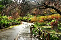 Dandenong Ranges in Victoria are popular among tourists.
