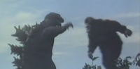 Battle sequence in King Kong vs. Godzilla showing the title characters fighting each other.