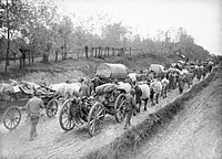 Great Serbian Retreat in 1915; Serbia lost about 850,000 people during the war, a quarter of its pre-war population