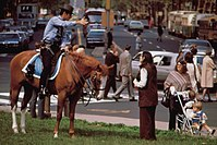 Mounted police officer in Center City, 1973