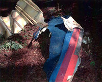 """Debris of Flight93 found at crash site. The United Airlines """"Battleship Gray"""" livery used on the aircraft is visible."""