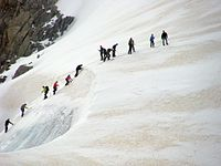 alt=mountaineers roped together on a glacier Glacier travel – beginners learning the ropes on the Aiguille des Grands Montets