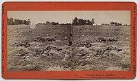 """""""Unburied Dead on Battlefield"""" (by John Reekie; issued as Stero #914 being taken on the 1862 Battlefield of Gaines Mills aka First Cold Harbor April 1865; taken near the Adams Farm where 7th New York artillery was stationed June 1864 see Civil war Talk."""