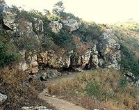 The Sattapanni caves of Rajgir served as the location for the First Buddhist Council.