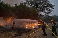 Five of the twenty largest wildfires in California history were part of the 2020 wildfire season.