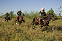 Border Patrol agents in southern Texas in 2013.