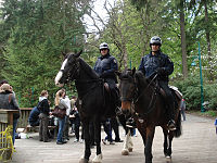 Mounted officers of the Vancouver Police Department in Stanley Park