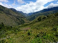 Baliem Valley in the New Guinea Highlands