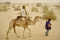 A camel ride in the Sahara desert, outside Timbuktu