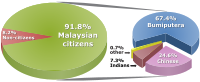The percentage distribution of Malaysian population by ethnic group based on 2010 census