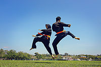 Traditional sports such as the martial art style Silat Melayu persist alongside modern sports.