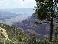 The North Rim of the Grand Canyon