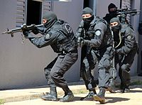 Field agents of the Federal Police's Tactical Operations Command.