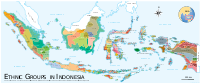 A map of ethnic groups in Indonesia