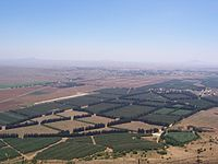 The Syrian Golan Heights occupied by Israel since the Six-Day War