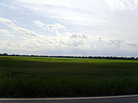 The flat terrain and rich soils of the Arkansas Delta near Arkansas City are in stark contrast to the northwestern part of the state.