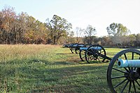 Cannons at Battle of Pea Ridge Site