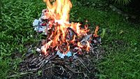 A typical small burn pile in a garden.