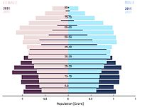 Population Pyramid in South India