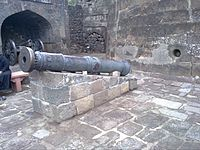 One of the Daulatabad cannons