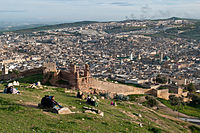 View of the medina (old city) of Fez.