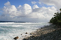 Ocean side of Funafuti atoll showing the storm dunes, the highest point on the atoll.