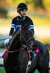 Smith with Shared Belief in 2014