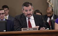 Cruz questions US Customs and Border Protection leaders on COVID-19 preparedness in March 2020